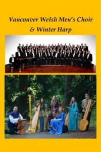 christmas-star_vwmc_winterharp