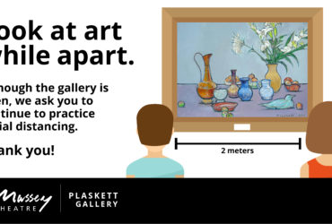 Plaskett Gallery: Art from Apart